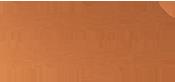 Absolute Collagen  logo